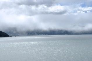 Wellington and fog