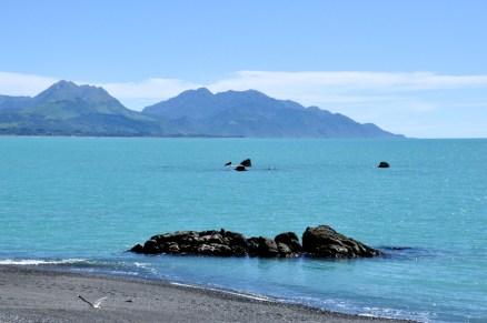More Bay