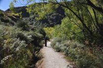 The trail to Diamond Lake