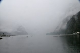 The Milford Sound harbor