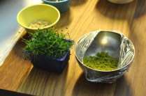 Chive sprouts and ground pistachio nuts