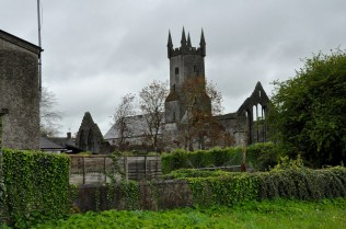 The Ennis Friary