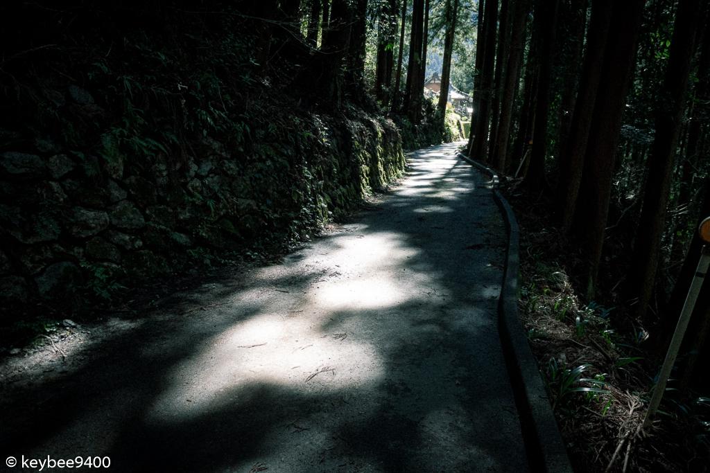 木洩れ日と石垣