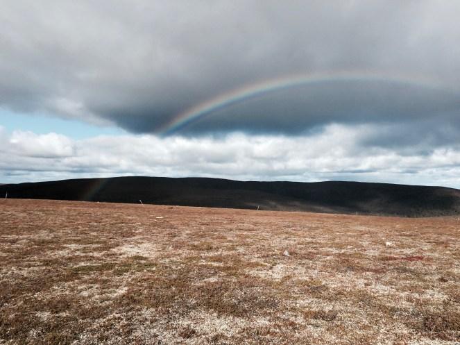 Urho Kekkosen kansallispuisto, UKK National Park, Raututunturit