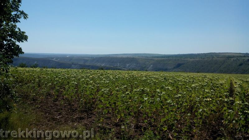 Mołdawia - Dzień 6 widok na Orheiul Vechi trekkingowo