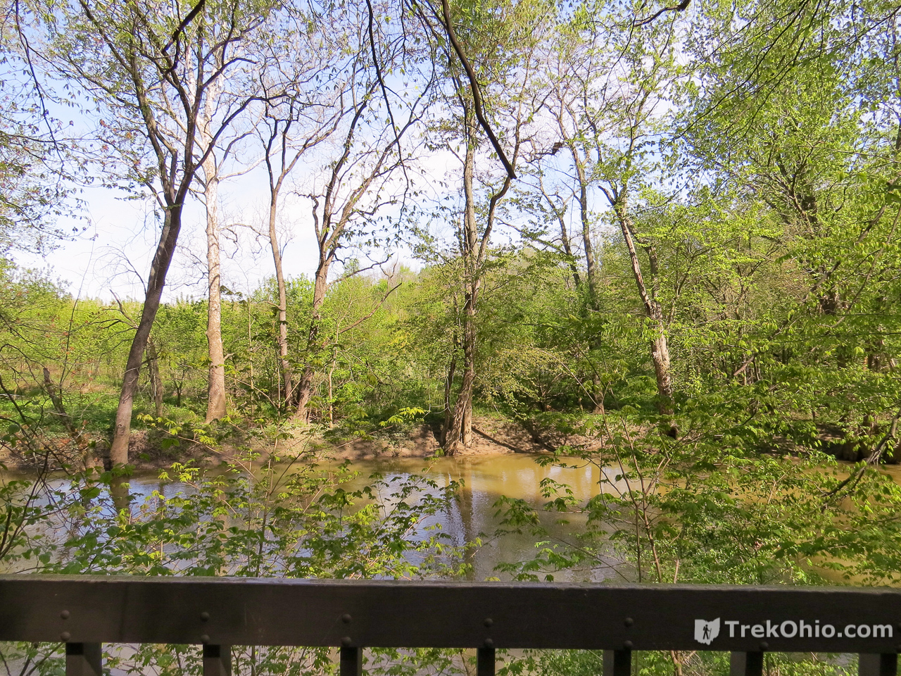 Goll Woods State Nature Preserve
