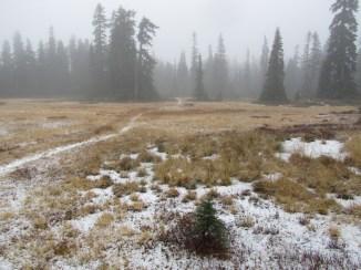 Cascade Crest Trail