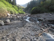 Zig Zag Creek