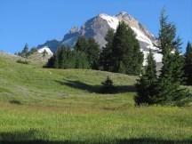 A meadow on the far side of Meadows Sky area.