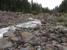 Newton Creek was running low.