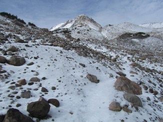 On the Timberline Trail on the section well above timberline.