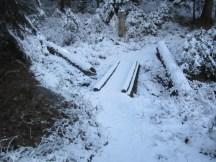 Light snow frosting on the trail.
