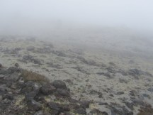 When we got to the intersection with Loowitt trail we were still fogged in. This was our none view of the mountain and Monitor Ridge. At this point we thought me might be in the fog all day.