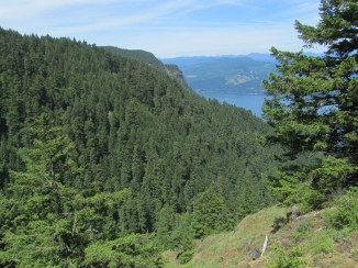 There are just a couple of open spots on the trail where you can get a view.
