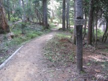 Trail junction from 29 to 29a.