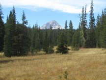 Mt. Hood from Bonney Meadows