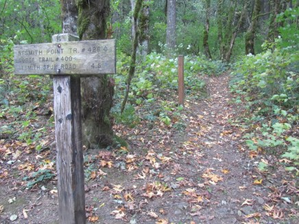 Trail junction with Nesmith Point Trail.