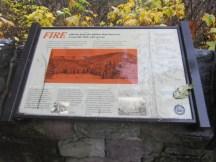 The talks of the Tillamock fire.