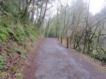 Old roadways make up part of the trail system.