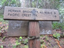 We took the low trail to the bridge and the PCT.