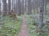 The trail has several land marks to let you know where you are at. This is where the trail passes through the old CCC camp.
