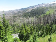 Looking down at the end of Elk Cove and the fire burn area.