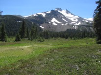 Yet another photo of Mt. Jefferson. The meadows were green and misquotes were out.