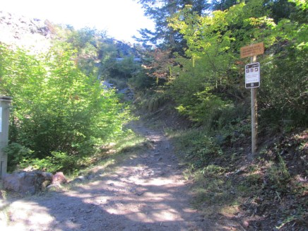 The first part of the hike is on the Toutle Rive Trail.