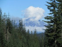 Our view of Mt. St. Helens at the trail head.