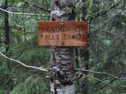 Trail head sign at Panther Creek Fall. It is a short well graded trail the viewing platform a Panther Creek Falls.