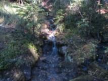Start of Lady Creek