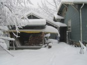 Looking back at the wood shed I could see how deep the snow was and that I should have gotten another cord of wood.