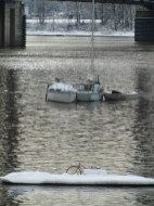Some homeless have bought cheap boats and now live in Willamette Cove.