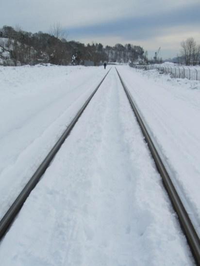 Tracks heading to University of Portland