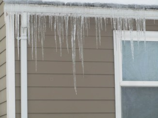 Best Icicles I saw all day.