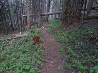 Heading back down on the Wyeth trail.