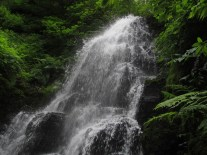 Fairy Falls had lot of water in it.
