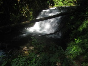 A water fall on Multnomah Creek.
