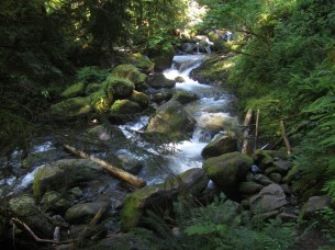 We parted Multnomah Creek do the switchback crowed with tourist back to the car.