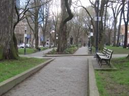 Downtown Park Block