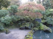 JapaneseGarden_IMG_4733