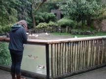 Zoo_DSCF1556