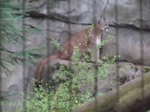 Zoo_IMG_4875