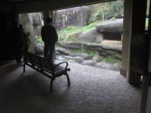 Zoo_IMG_4919