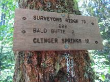 You come up the Oak Ridge Trail to the junction with Surveyors ridge trail that you take to Bald Mt.