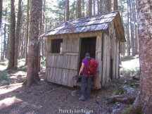 Not sure why this old shed was out here. It was at a trail junction net to the road