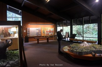 Inside the Ohanapecosh Visitor Center.