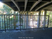 Trail goes under I5 Bridge