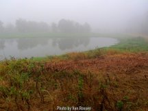 Ridgefield_IMG_1250