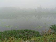 Ridgefield_IMG_1267